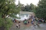 17 - Inaugurazione laghetto delle Ninfee